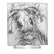 Hair-ied Horse Soilder Shower Curtain