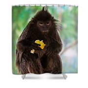 Hairy Monkey Shower Curtain