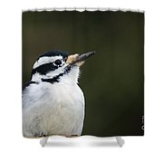 Hairy Profile Shower Curtain