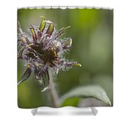 Hairy Scary Shower Curtain