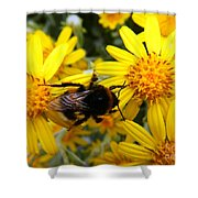 Hairy Visitor Shower Curtain
