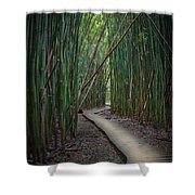 Haleakala National Park Shower Curtain