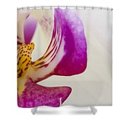 Half An Orchid Shower Curtain