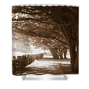 Half Moon Bay Pathway Shower Curtain
