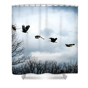 Half Second Of Flight Shower Curtain