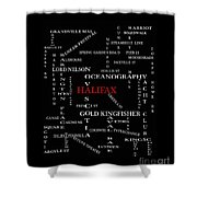 Halifax Nova Scotia Landmarks And Streets Shower Curtain
