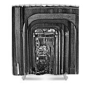 Hall Of Giants - Beneath The Aurora Bridge Shower Curtain
