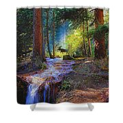 Hall Valley Moose Shower Curtain