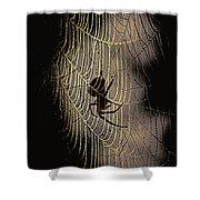 Halloween - Spider Shower Curtain