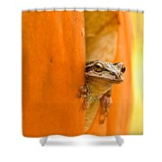 Halloween Surprise  Shower Curtain by Jean Noren