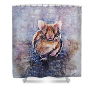 Hamster Shower Curtain