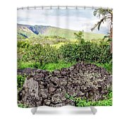 Hana Church 11 Shower Curtain