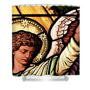 Hand Of The Angel Shower Curtain