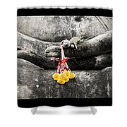 Hands Of Buddha Shower Curtain