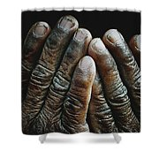 Hands Of Time 2 Shower Curtain