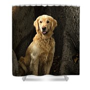 Handsome Boy Shower Curtain
