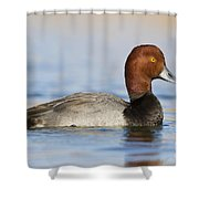 Handsome Redhead Shower Curtain