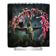 Hang Time  Shower Curtain