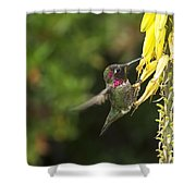 Hangin For A Meal Shower Curtain