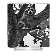 Hangin Out Shower Curtain