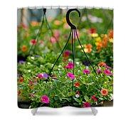 Hanging Flower Baskets Shallow Dof Shower Curtain