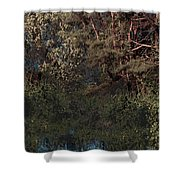 Hanging Garden In Moonlight Shower Curtain