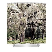 Hanging Moss Shower Curtain