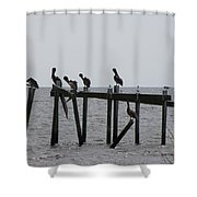 Hanging Out With Friends Shower Curtain