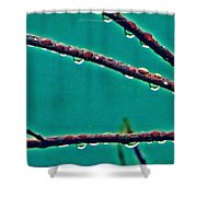 Hanging Pearls Shower Curtain
