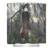 Hanging Pine Cone Shower Curtain