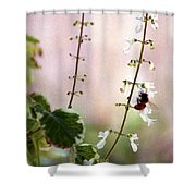 Hanging Pot With Bee Shower Curtain