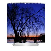 Hanging Tree Sunrise Shower Curtain