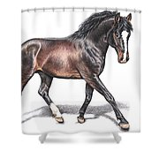 Hannoveraner Shower Curtain