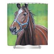 Hanover Shoe Farm Horse Shower Curtain