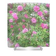 Hansa Roses Shower Curtain