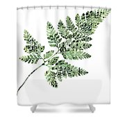 Happy Adventure Music Fern Shower Curtain