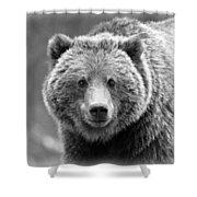 Happy Bear Shower Curtain