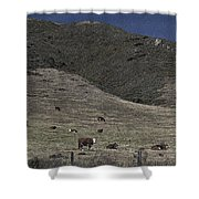 Happy Beef Cali Style Shower Curtain