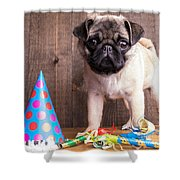 Happy Birthday Cute Pug Puppy Shower Curtain by Edward Fielding