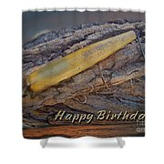 Happy Birthday Greeting Card - Vintage Atom Saltwater Fishing Lure Shower Curtain
