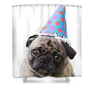 Happy Birthday Pug Card Shower Curtain
