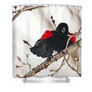 Happy For Spring Shower Curtain