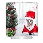 Xmas Holidays Greeting Card 108 Shower Curtain