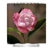 happy mother's day - Camellia Shower Curtain