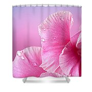 Happy Mother's Day Macro Pink Rose Petals Shower Curtain