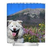 Happy Mountain Dog Shower Curtain