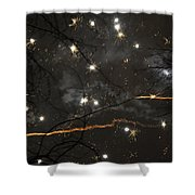 Happy New Year 2014 Two Shower Curtain