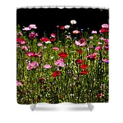 Happy Poppies Shower Curtain