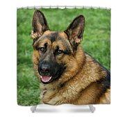 Happy Shepherd Shower Curtain