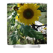 Happy Sunflowers Shower Curtain
